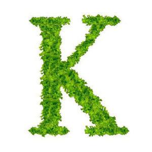 Ad ogni vitamina la sua lettera: k come 'k'oagulazione