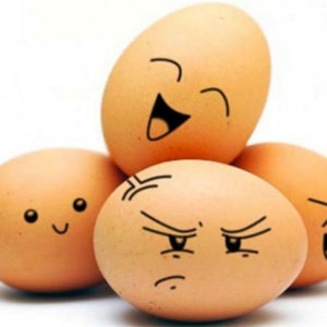 E' nato prima l'uovo o la gallina?! Non importa…l'importante e' mangiare le uova
