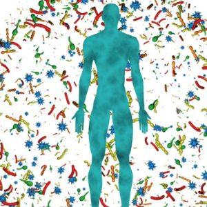 Chi protegge il microbiota protegge un tesoro