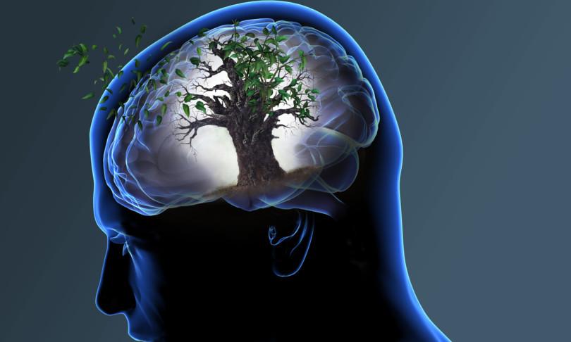 Alzheimer e alimentazione…un legame sempre più evidente